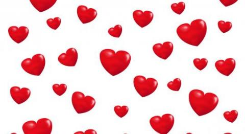 Dinsdag 14 februari 2017 Valentijnsdag !